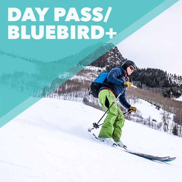 Picture of Day Pass with Bluebird+ Membership