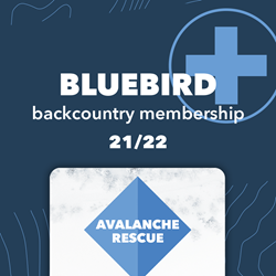Picture of AIARE Avalanche Rescue with Bluebird+ Membership