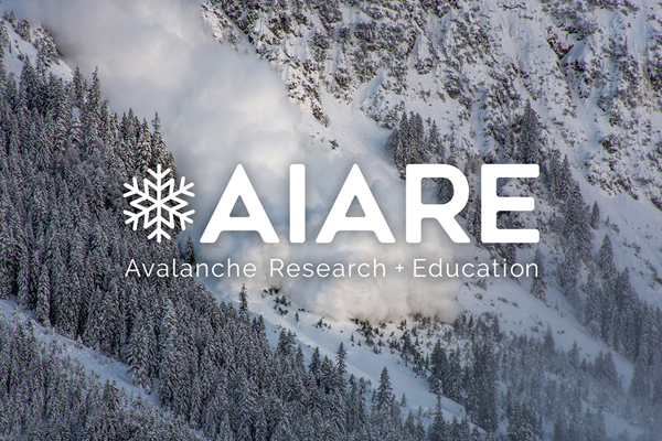 Picture for category Avalanche Courses